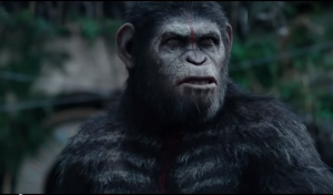 dawn-of-the-planet-of-the-apes-dominates-u-s-box-office-transformers-age-of-extinction-heading-to-1-billion-worldwide
